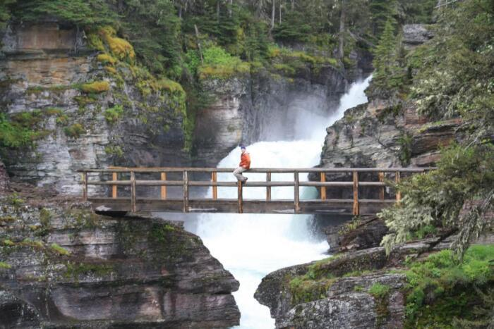 Virginia Falls Glacier National Park