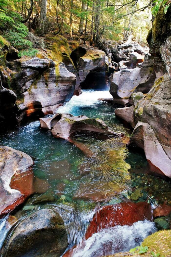 avalanche creek glacier national park near things to do in whitefish montana