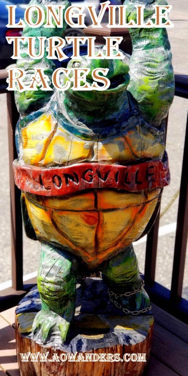 No summertime family vacation or RV road trip in Minnesota would be complete without participating the traditional turtle races held every summer in Longville Minnesota.