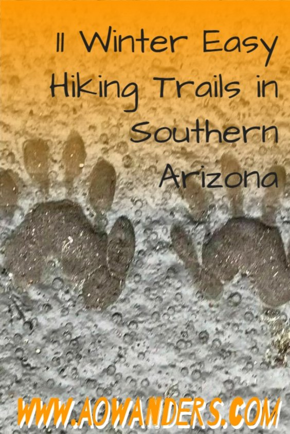 Hambrug trail is the perfect day hike for RVers and snowbirds looking for a mild to easy hike in southern Arizona