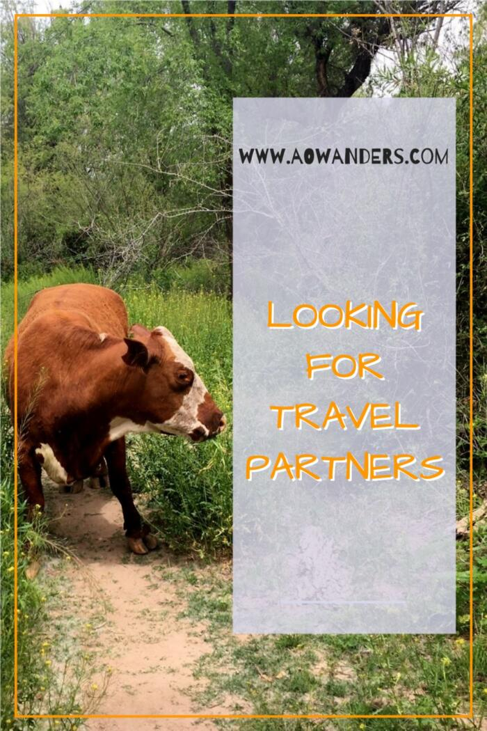 Easiest way to find travel partners is to the use app meetup.  Which is my number resource for finding new travel buddies or local if I am new to an area.